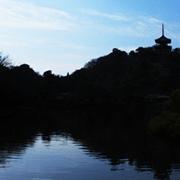 松阪エリア